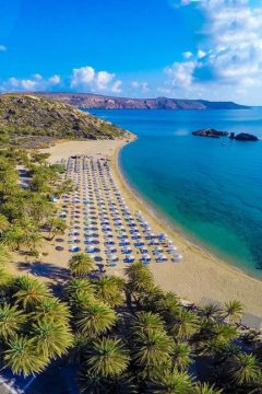 SITIA: AN EXOTIC PALM FOREST AND CRETE'S 'MUSE'